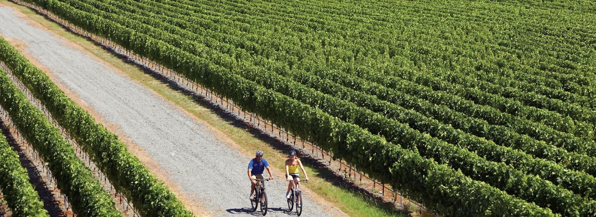 @Hawkes Bay Wines