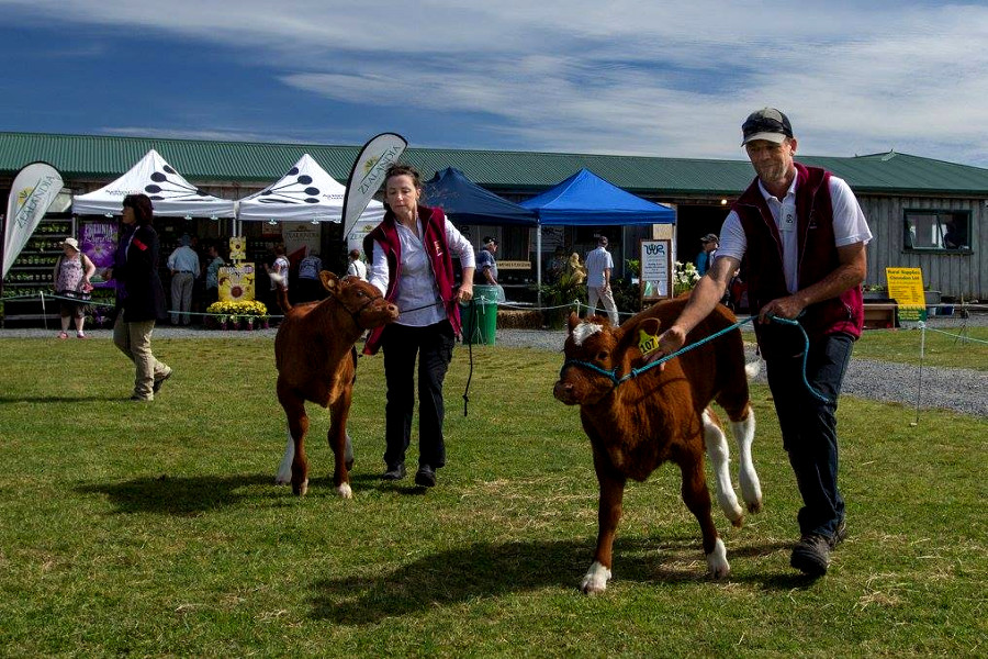 @The Clevedon A & P Show