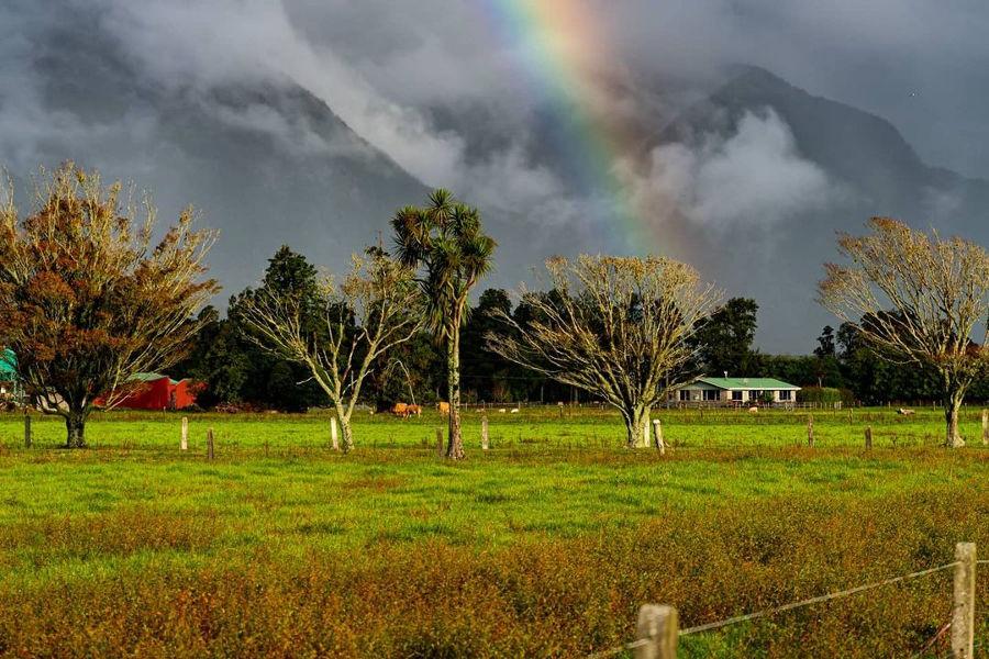 Arthurs Pass, New Zealand @tessavirginia_photography
