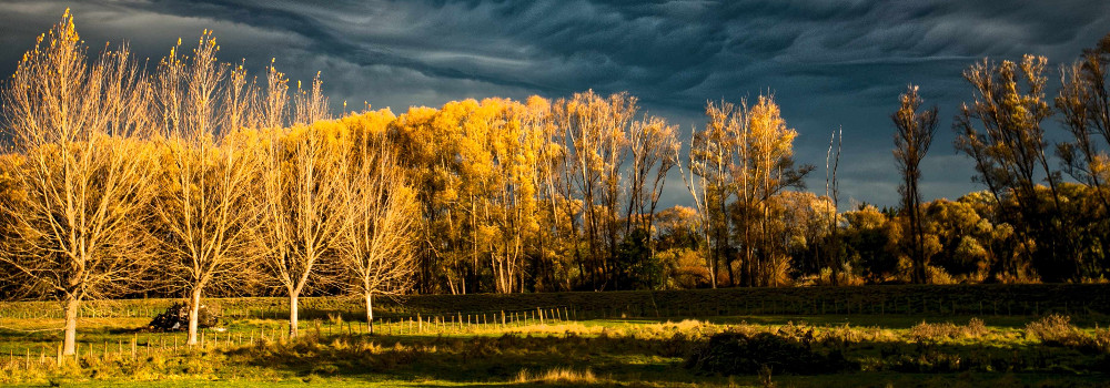 Storm sky with dramatic lighting in Waipawa, Hawkes Bay, New Zealand
