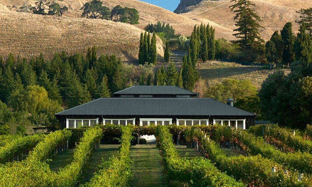 Black Barn Vineyards, New Zealand @blackbarnnz