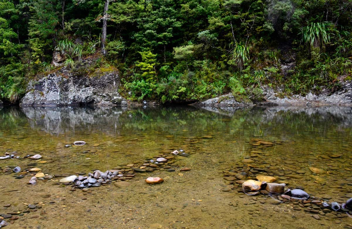 Broken Hills conservation campsite, Coromandel region, New Zealand @Shellie Evans