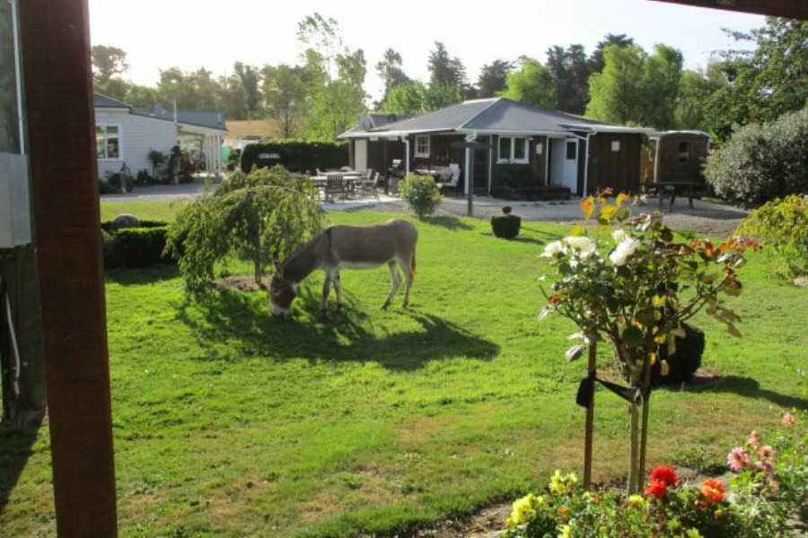 Cheviot Motel and Holiday Park @JulietQuilts