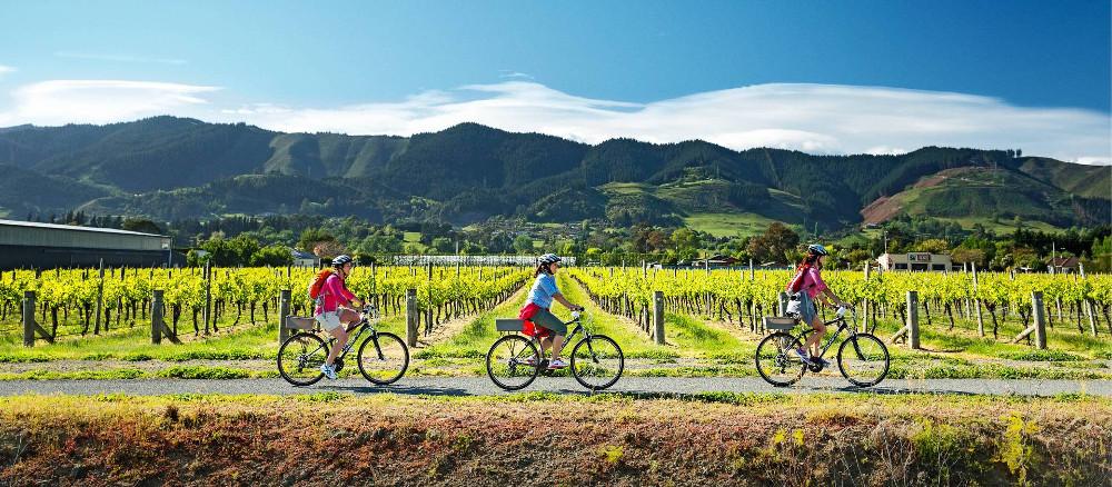 Cycling along the Nelson Great Taste Trail @Dean McKenzie