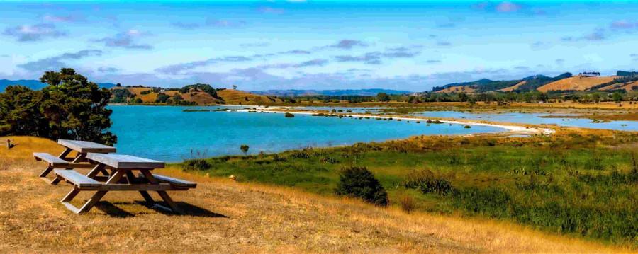 Duder Regional Park, Auckland, New Zealand