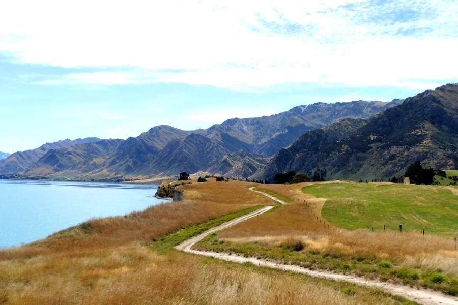 Gladstone Track, Lake Hawea, Hawea, New Zealand @Clare Fraser