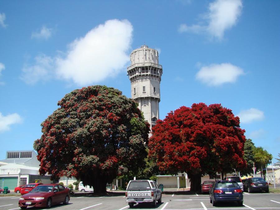 Hawera Water Tower, New Zealand @Mapio.net