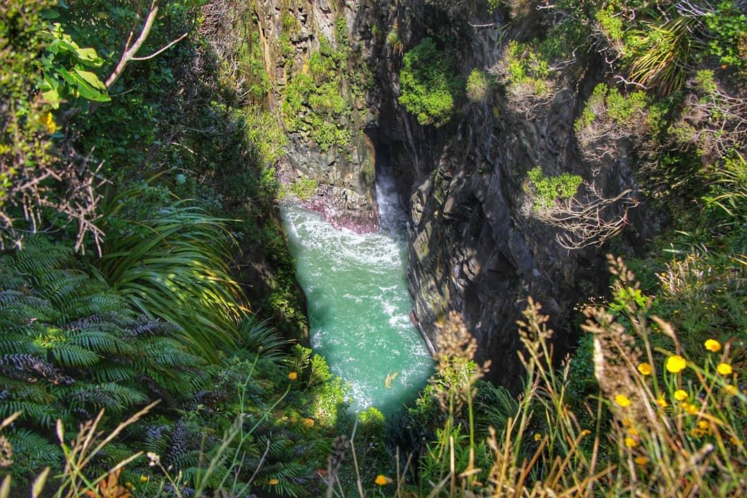 Jacks Blowhole, New Zealand @kepano72