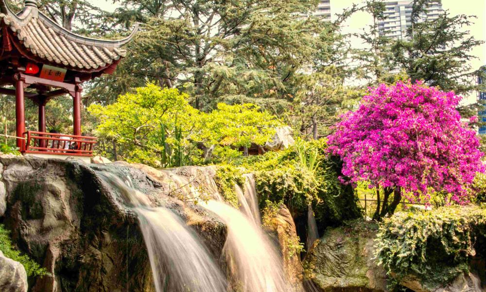 Japanese Friendship Public Garden, Auckland, New Zealand