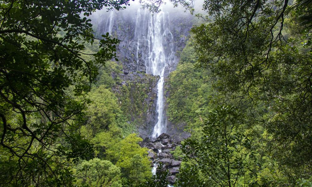 Kaimai National Park, New Zealand @wildernessmag