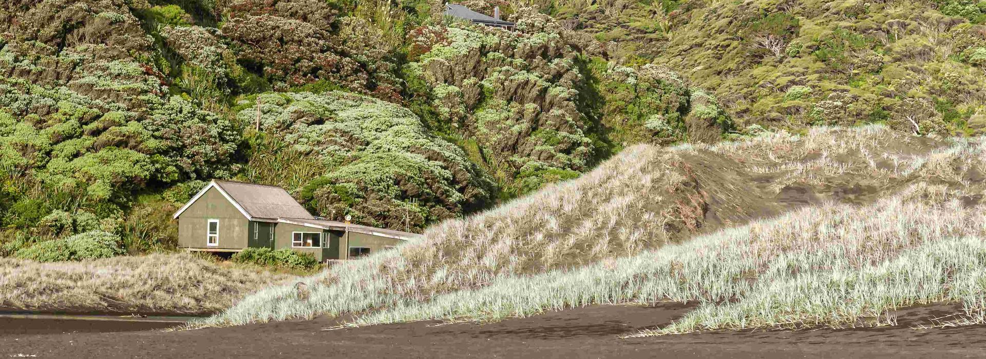 Waitakere Ranges near Karekare Beach, New Zealand