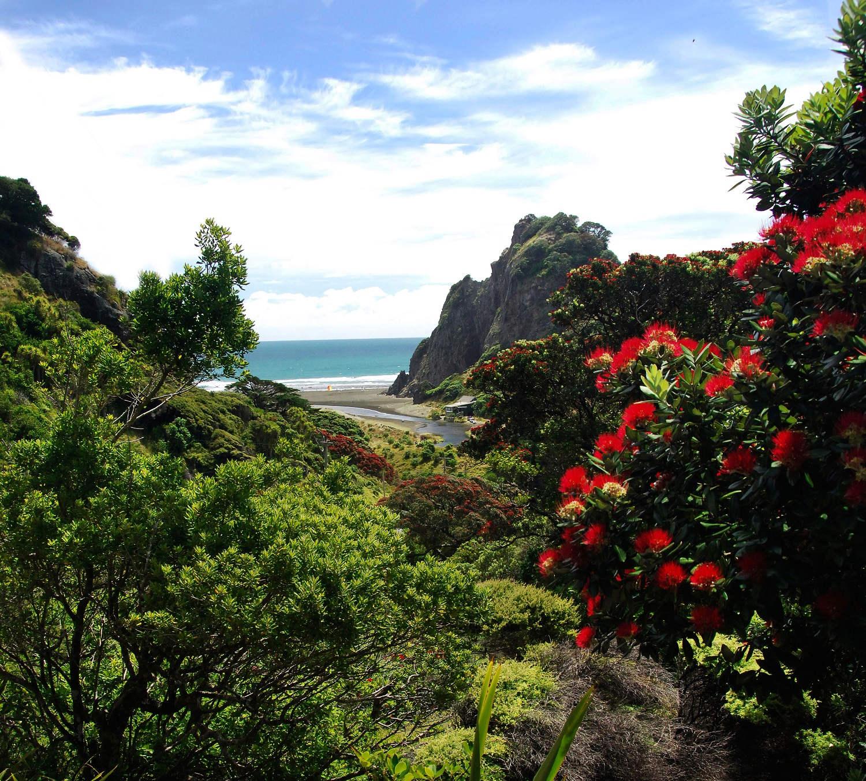 Karekare cliffs near Piha, West Auckland, New Zealand