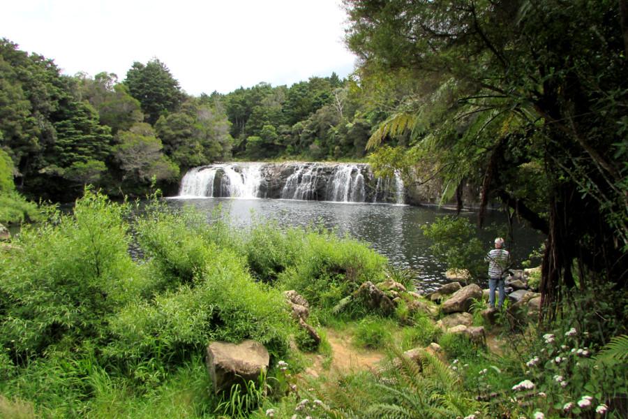 Kerikeri River Track, Kerikeri, New Zealand @Wilderness Magazine