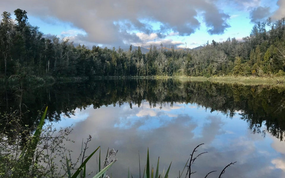 Lake Hanlon, Karamea Bluff, New Zealand @ronaldraiden