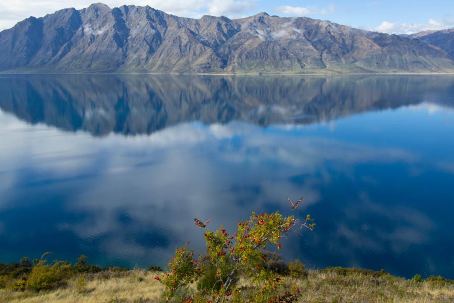 Lake Hawea, New Zealand @oliverhae