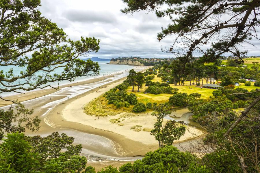 Long Bay Regional Park Auckland, New Zealand