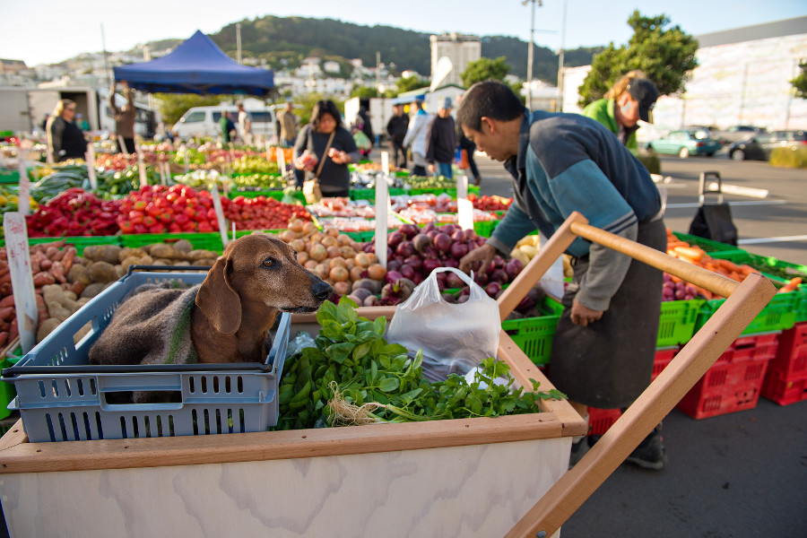 Marlborough Sunday Farmers Market, New Zealand @Krista Rossow