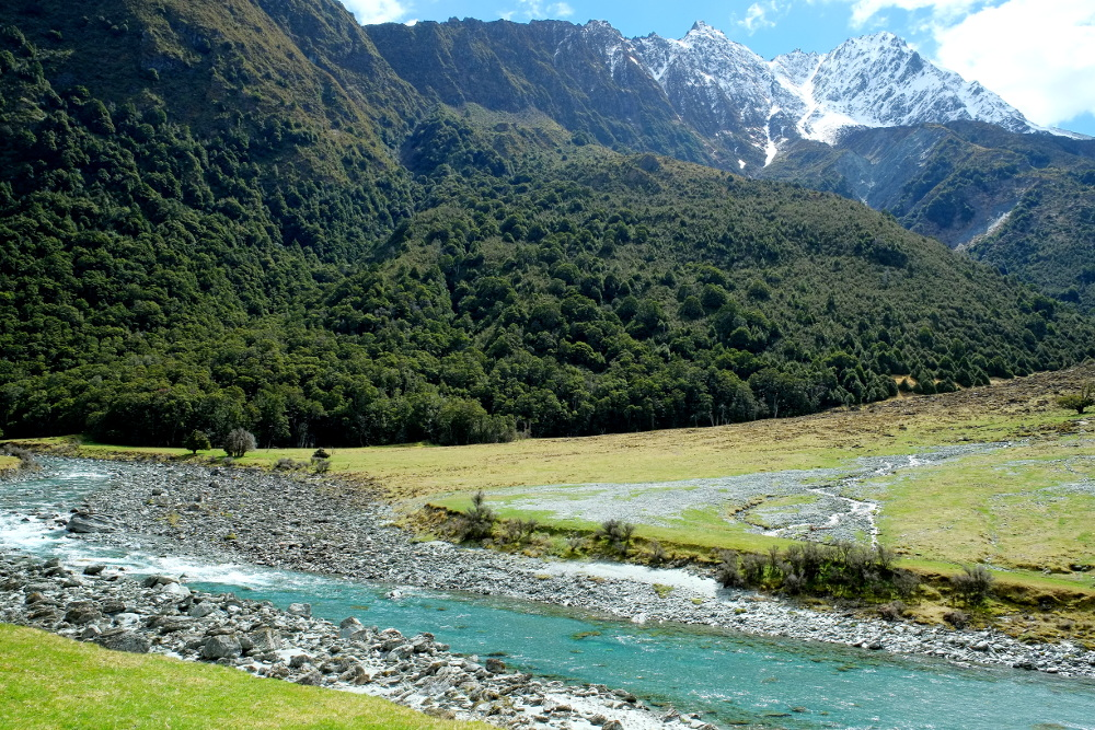 Mātakitaki River valley, New Zealand @Pseudopanax