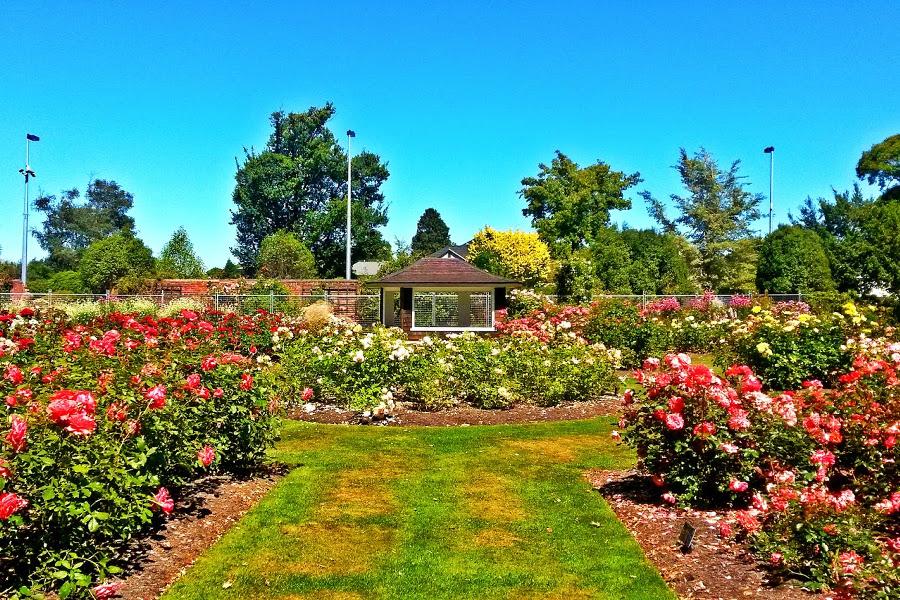 Mona Vale Gardens, New Zealand @Festistmirmhycz