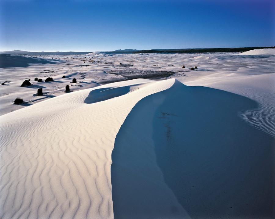 Ngunguru sand dunes, New Zealand @New Zealand Geographic