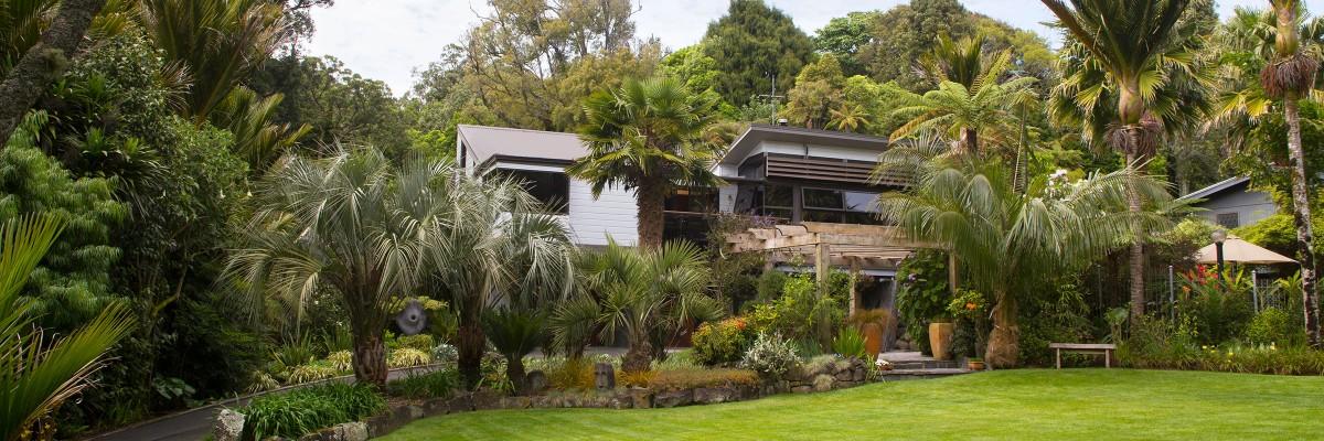 Nikau Grove, New Zealand @Taranaki Garden Festival
