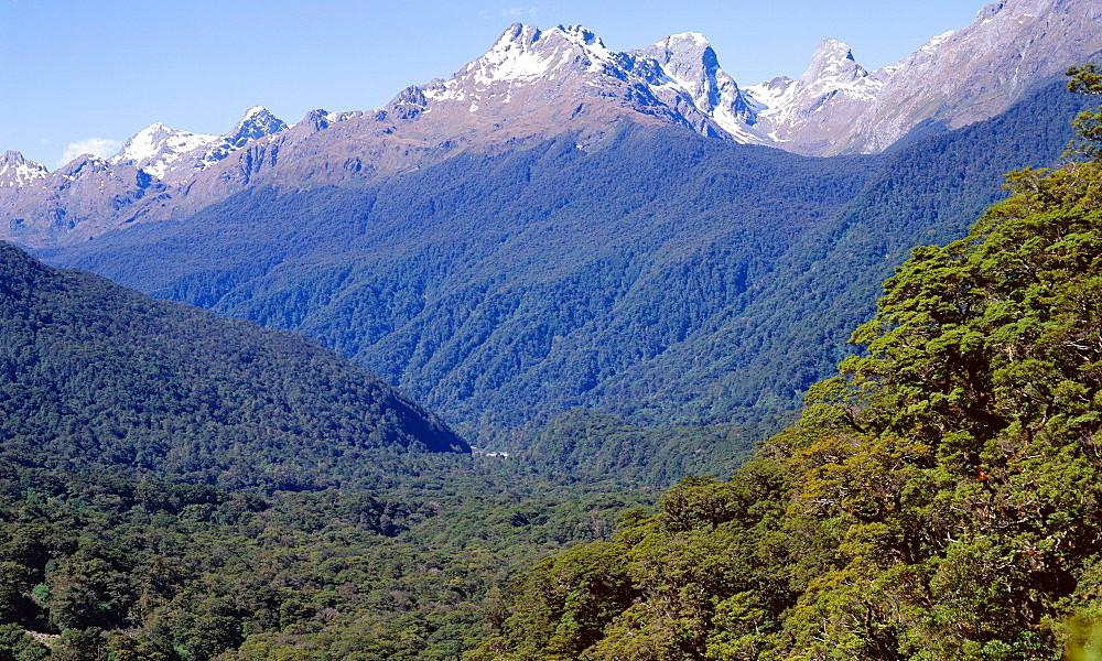 Pop's View, New Zealand @Jeremy Bright - Roberts Harding