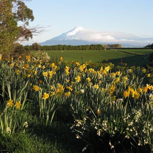 Puketarata Garden, New Zealand @Venture Taranaki