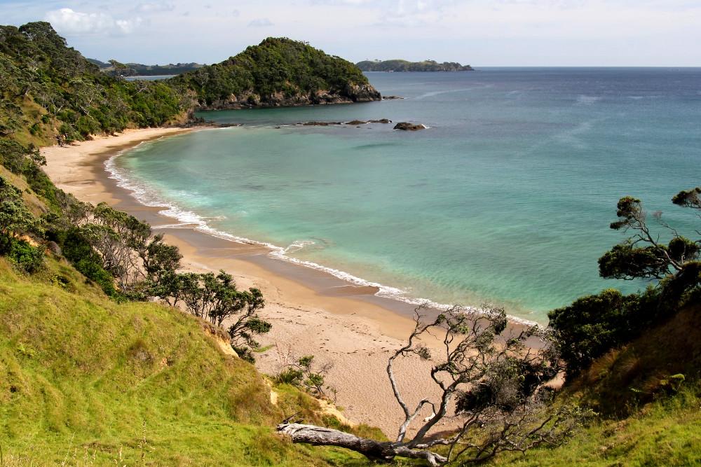 Sandy Bay, New Zealand @david113