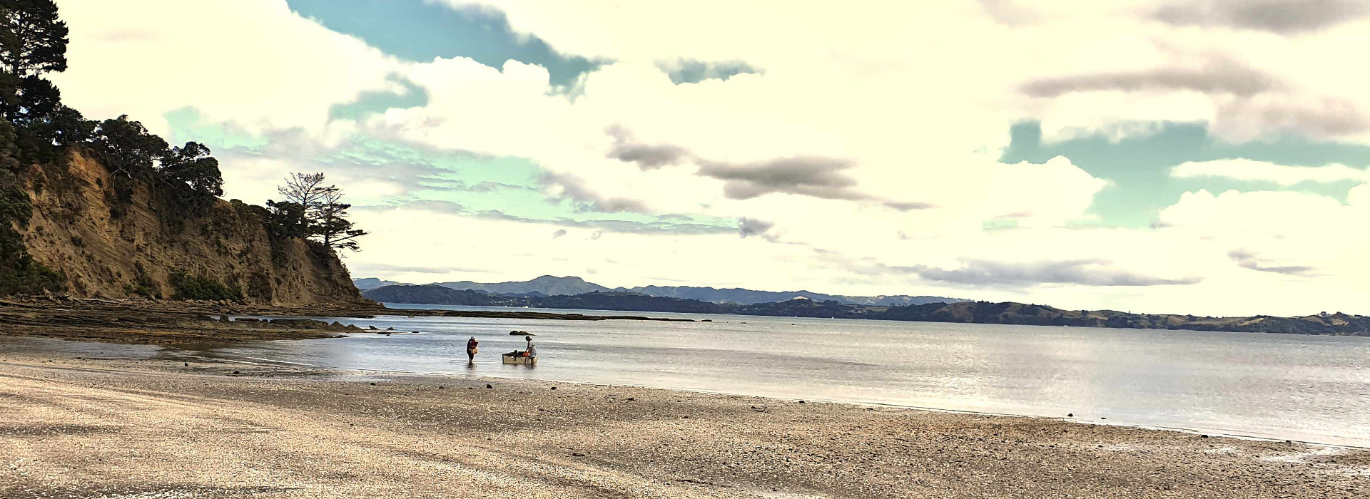 Scandrett Regional Park pocket perfect beach at low tide Auckland, New Zealand