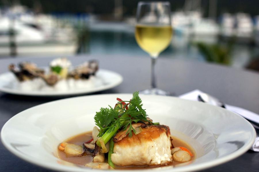 Oysters, Fish and White wine at Salt Restaurant at Whitianga, Coromandel. New Zealand