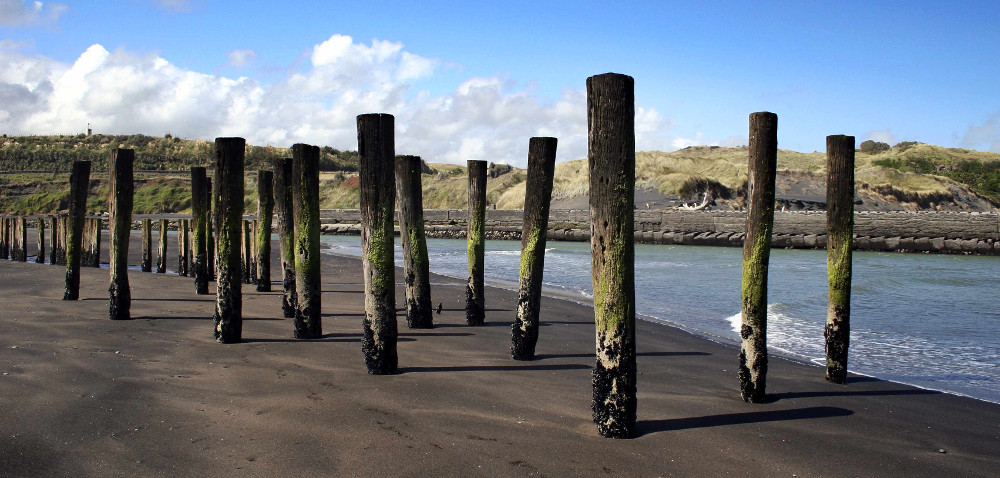 Wooden poles stand out of the sand at Patea