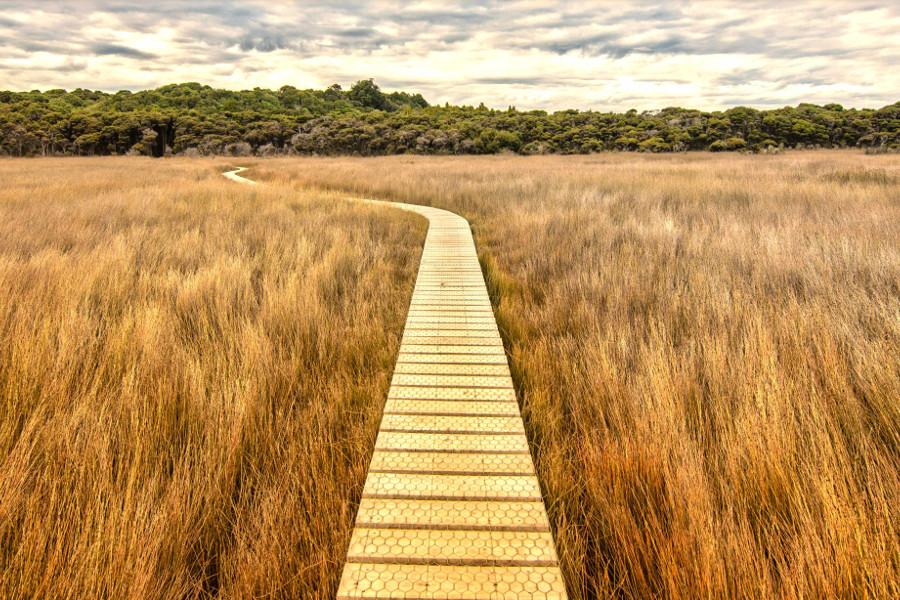 Tautuku Estuary platform in New Zealand