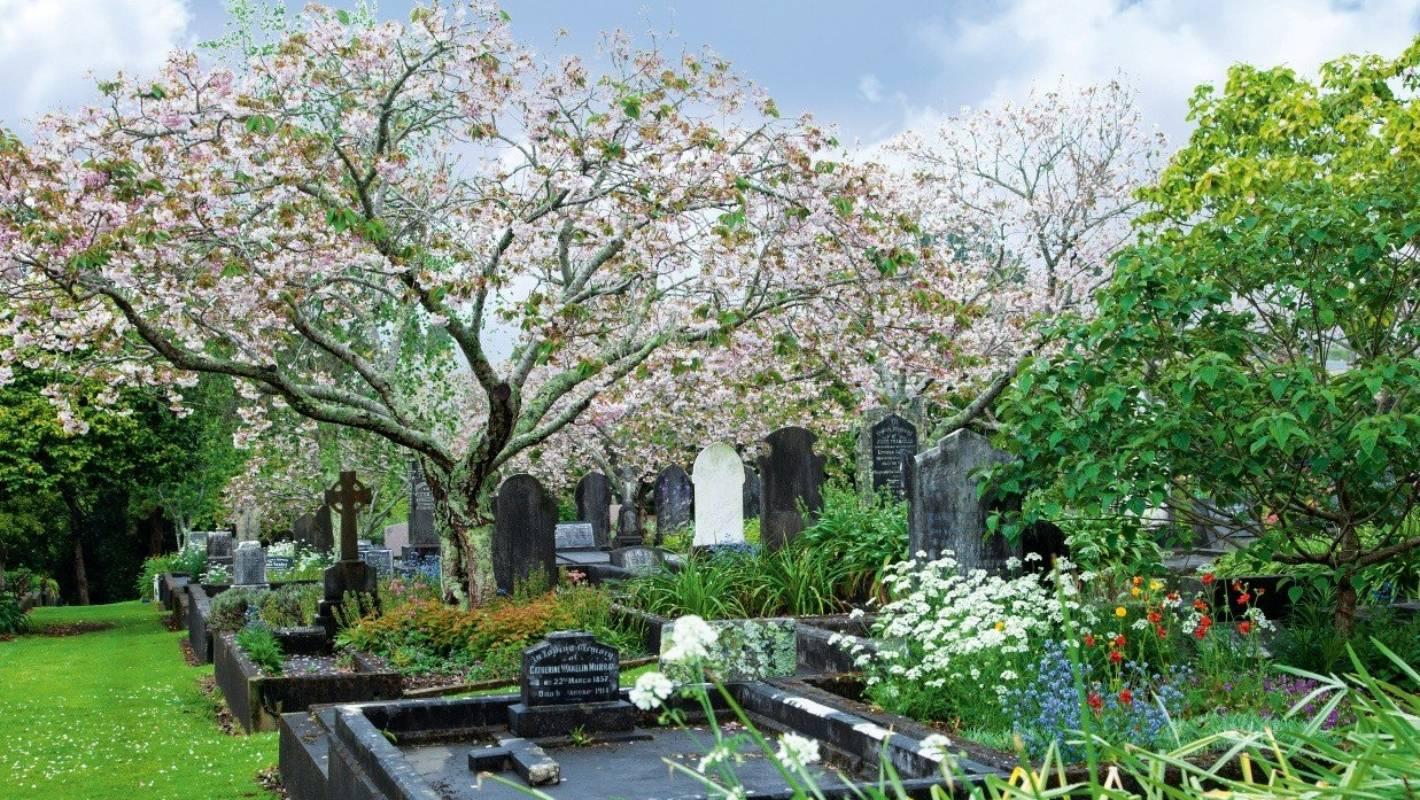 Te Henui Cemetery, New Zealand @Stuff