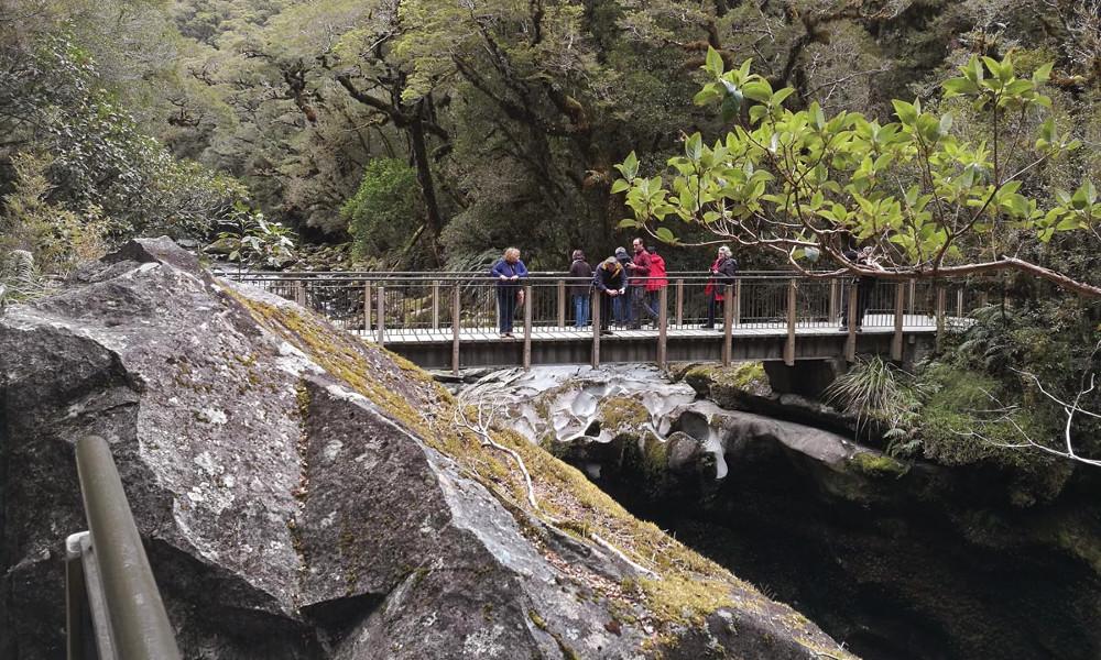 The Chasm walk, New Zealand @Benhi Dixon