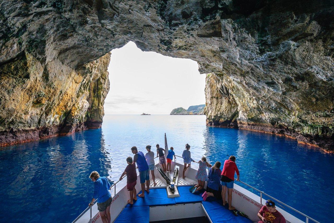 Tutukaka Boat Rides, New Zealand @Tripadvisor