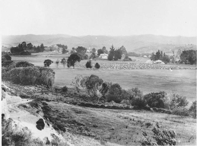 Upper Moutere Village