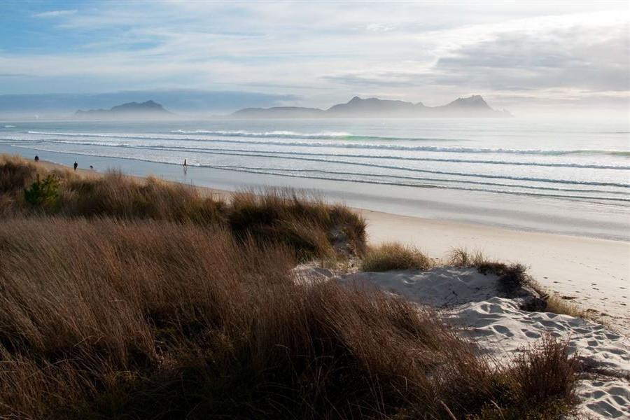Uretiti Beach conservation campsite @DoC