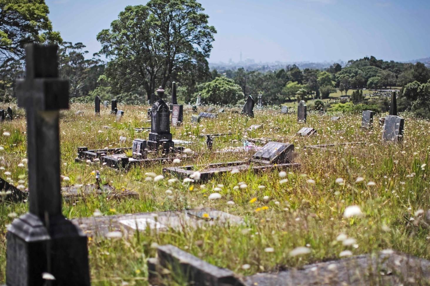Waikumete Cemetery, New Zealand @Stuff