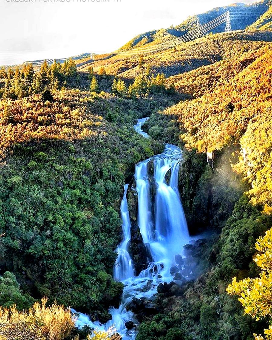 Waipunga Falls @natureexplorate