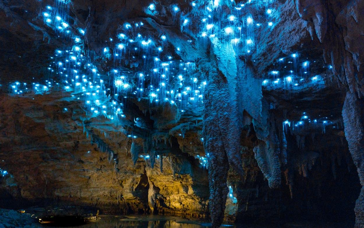 Waitomo Glowworm Cave, New Zealand @CaveWorld