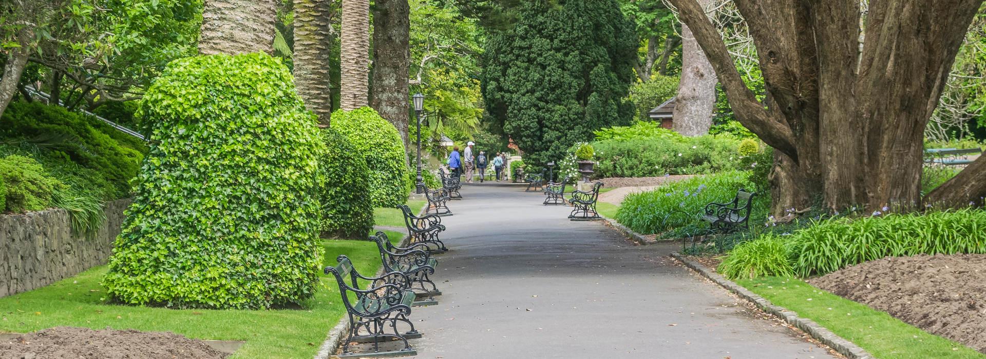 Wellington Botanic Garden @KRZYSZTOF GOLIK