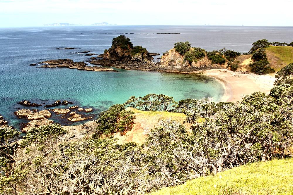 Whananaki, New Zealand @david113
