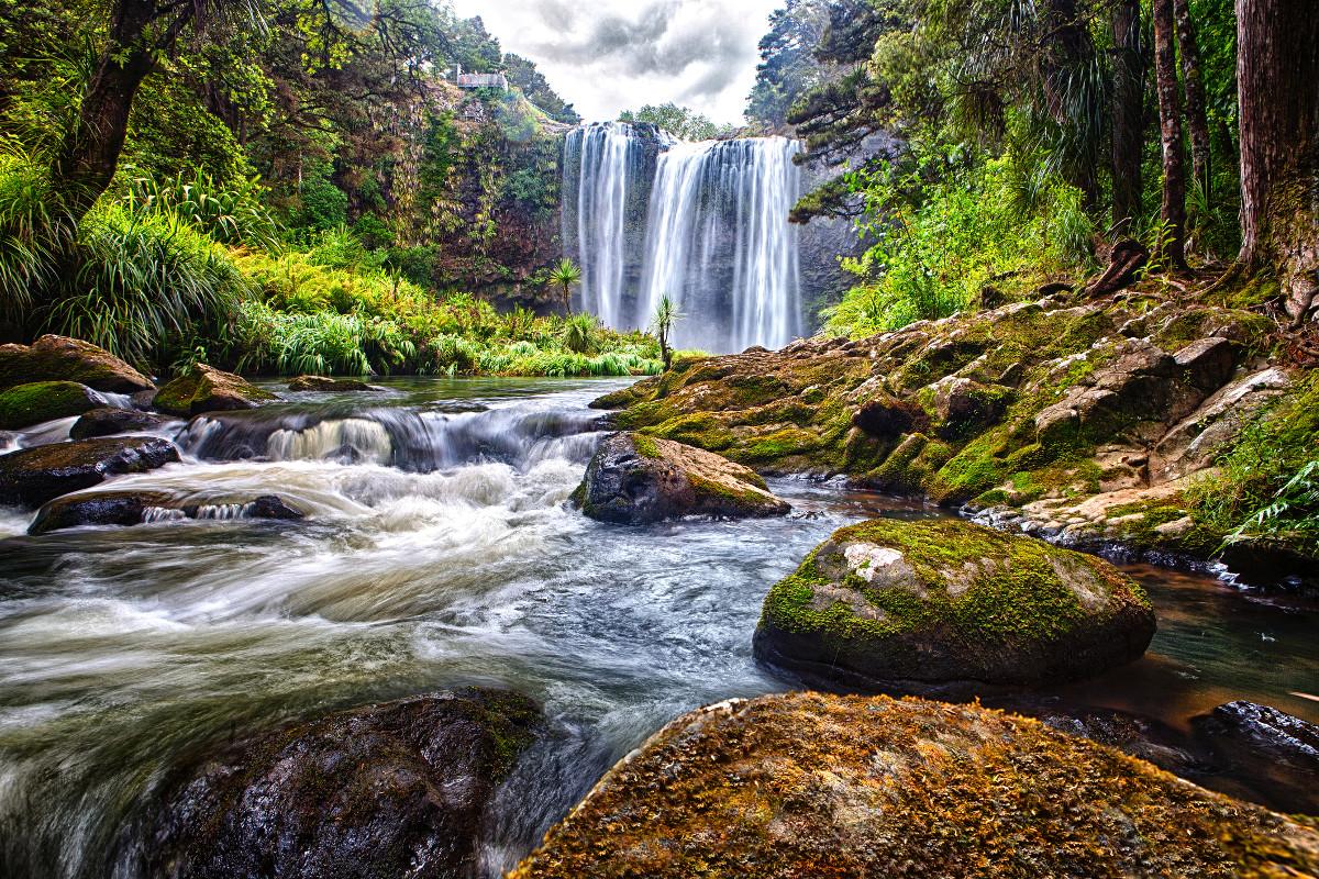 Waterfalls in the bush, river and stones, Whangarei waterfalls, New Zealand