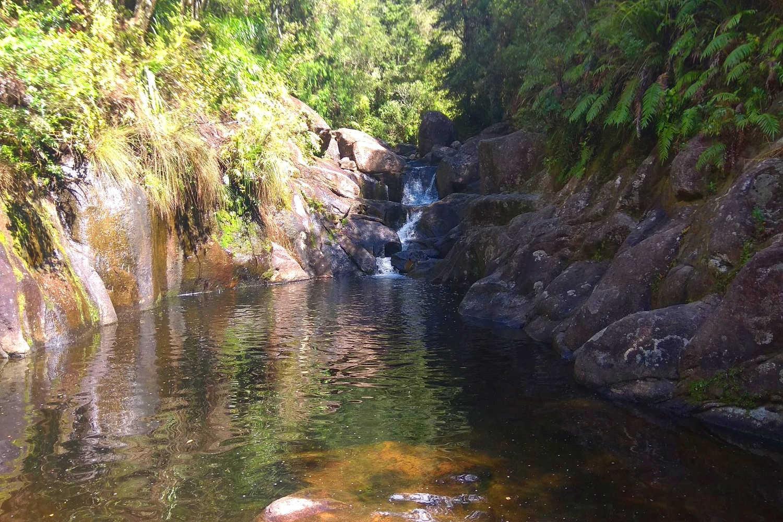 Aongatete Link Track to swimming holes,New Zealand @Explore Tauranga
