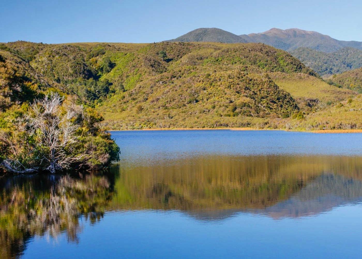 Aorere Goldfields Track,New Zealand @New Zealand Tramper