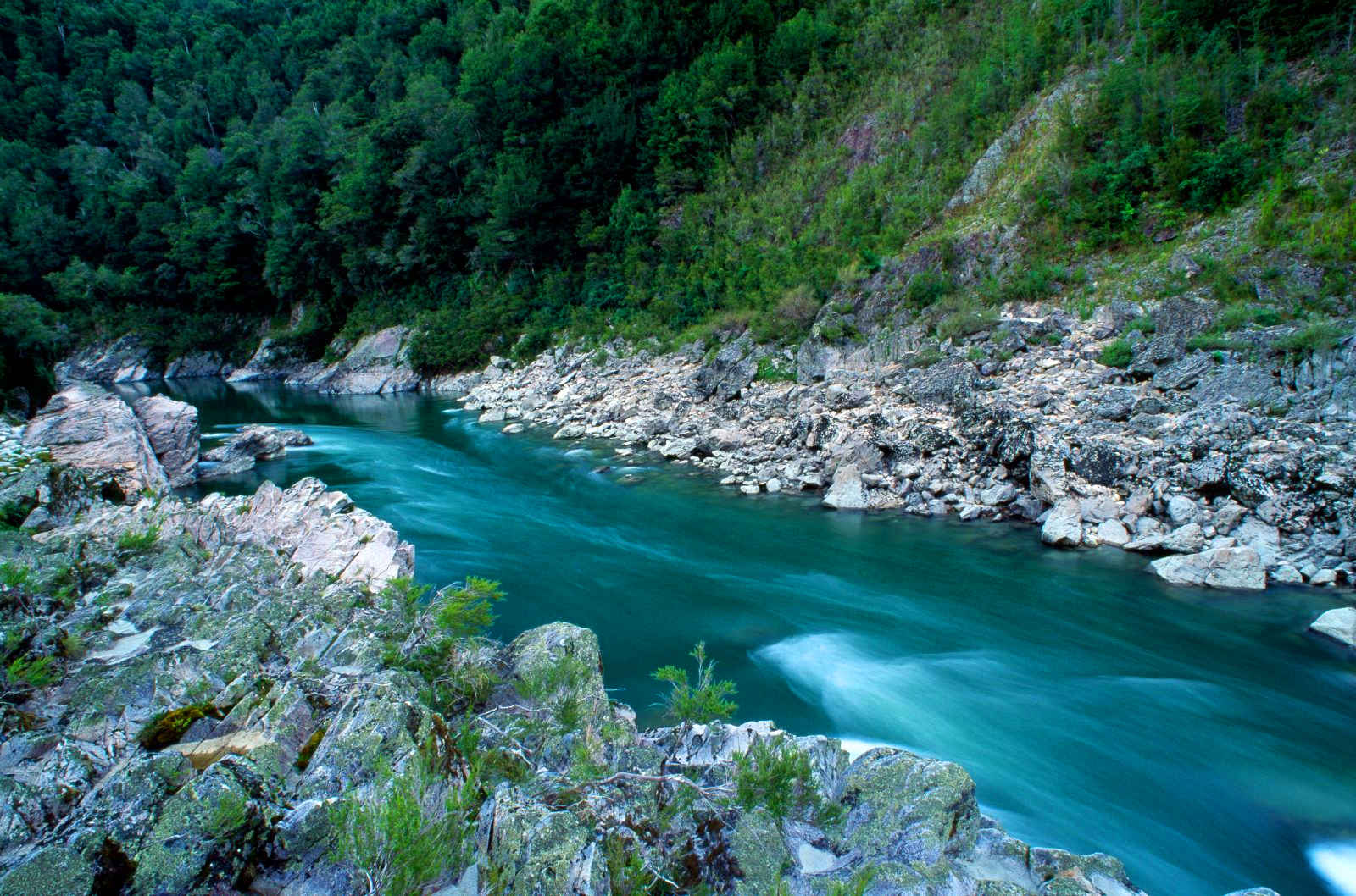 Buller River,New Zealand @New Zealand Geographic