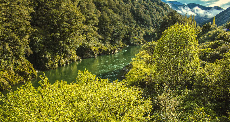 Beautiful scenery at Buller River, South Island, New Zealand