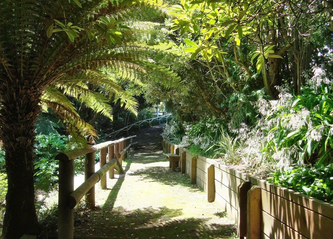 Goodson Dell, Hawera, New Zealand @Maurice Barton