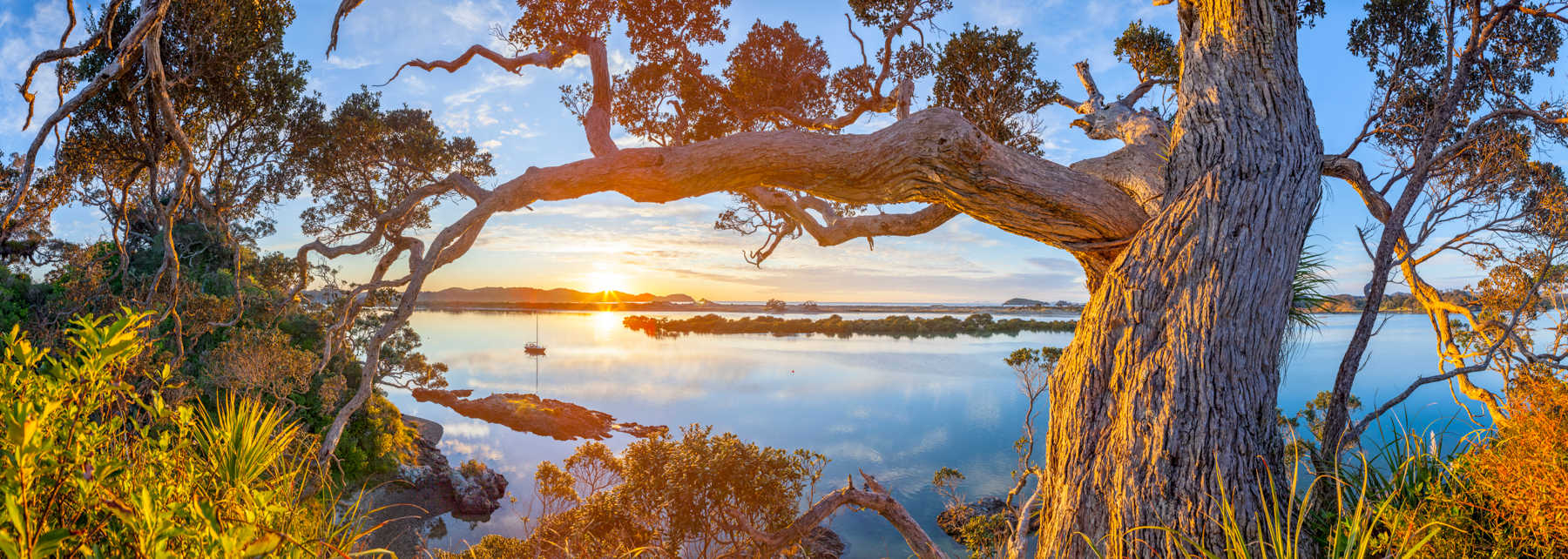 Ngunguru Sunrise @dougpearsonphotograph