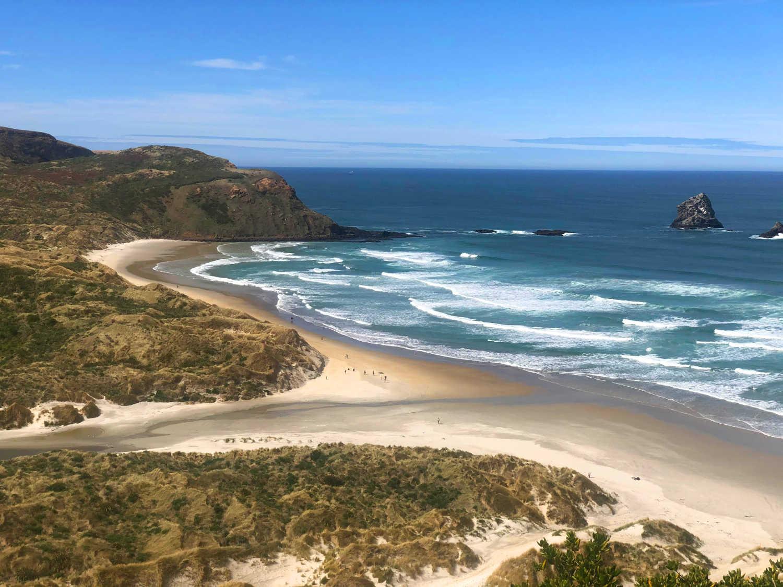 Sandfly Bay,New Zealand